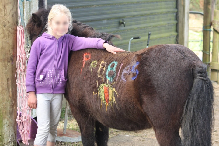 pony-painted-and-child