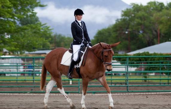 Heart B Dyna ridden by Laura Hermanson